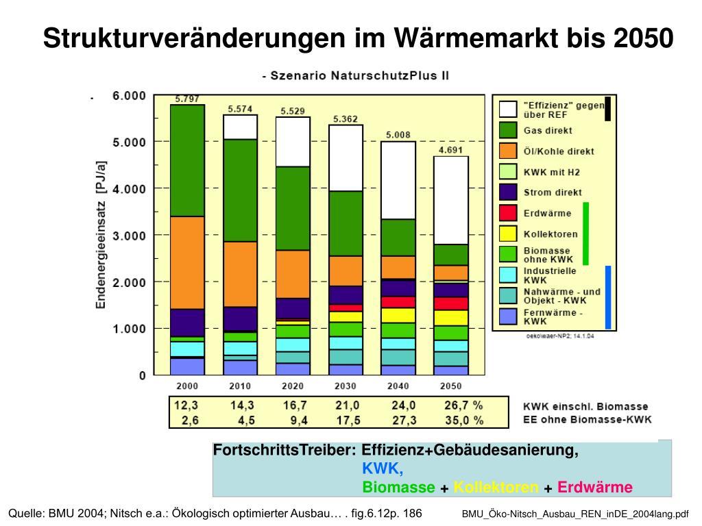 Strukturveränderungen im Wärmemarkt bis 2050