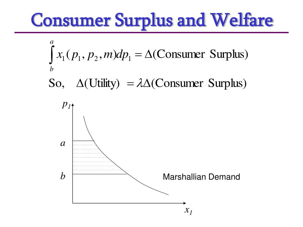 Consumer Surplus and Welfare