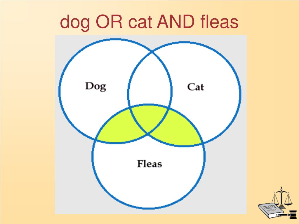 dog OR cat AND fleas