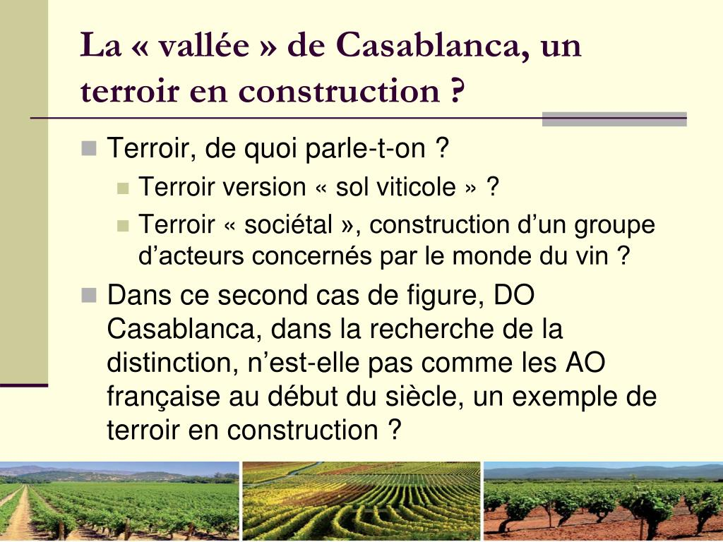 La «vallée» de Casablanca, un terroir en construction?