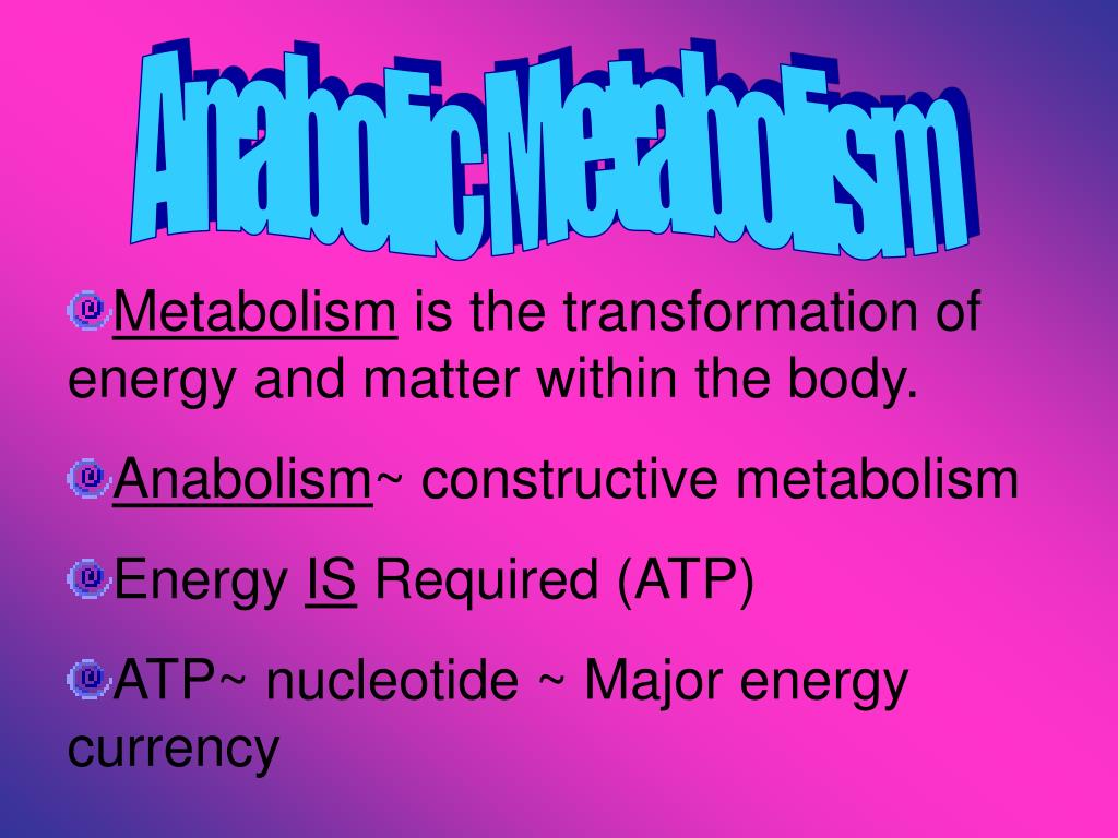Anabolic Metabolism