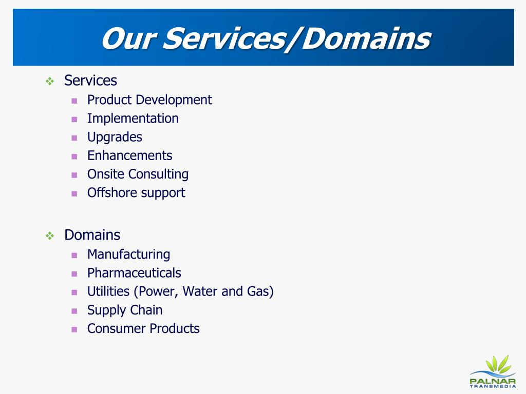Our Services/Domains