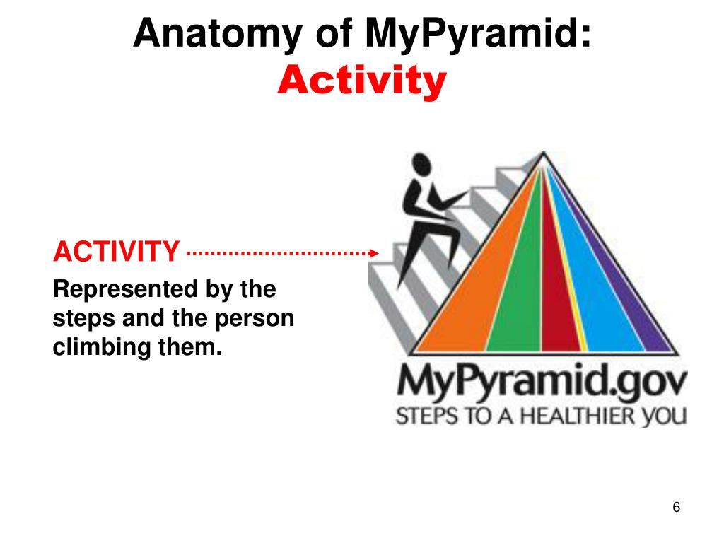Anatomy of MyPyramid:
