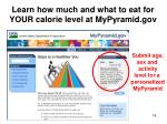 learn how much and what to eat for your calorie level at mypyramid gov