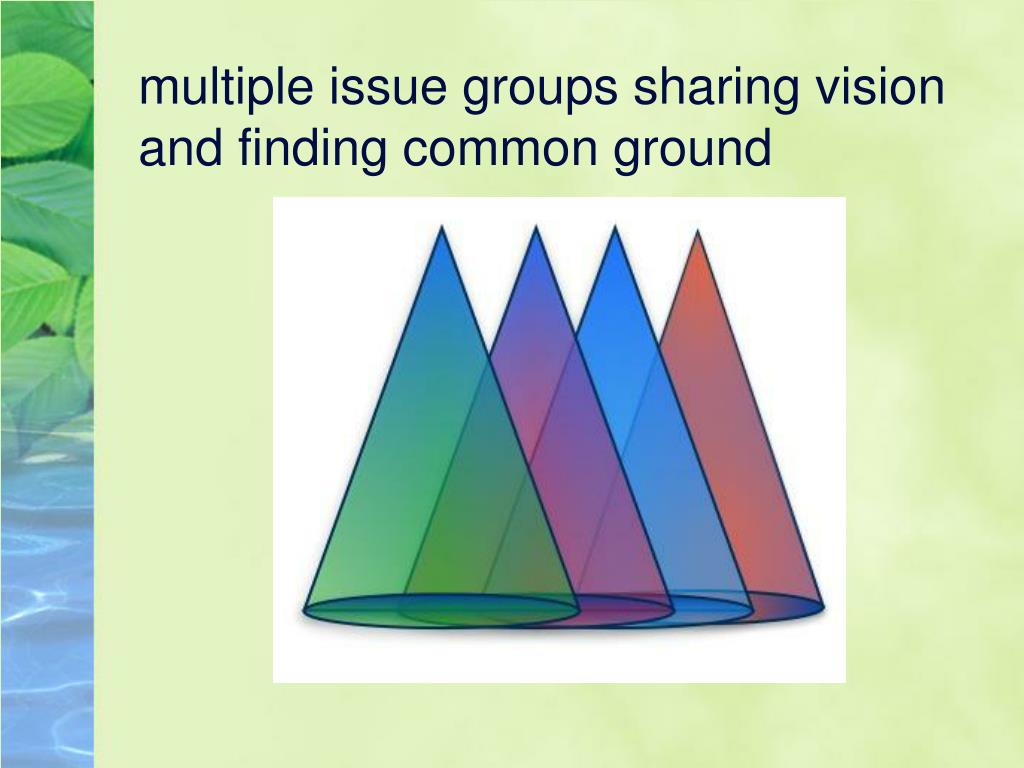 multiple issue groups sharing vision and finding common ground