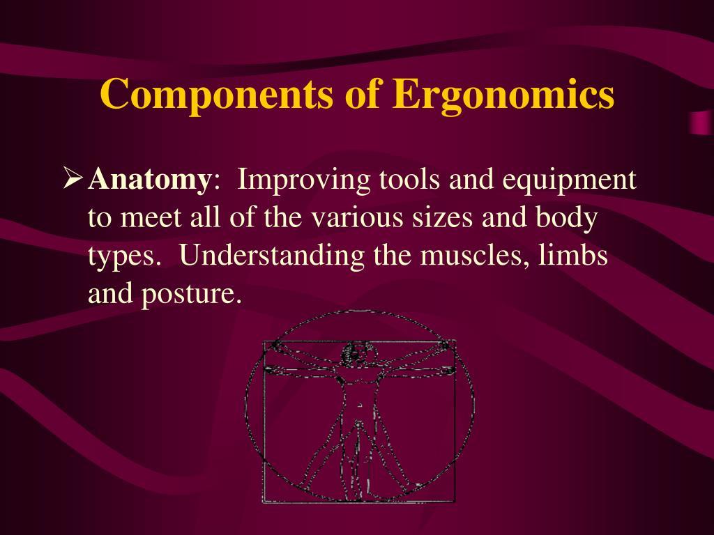 Components of Ergonomics