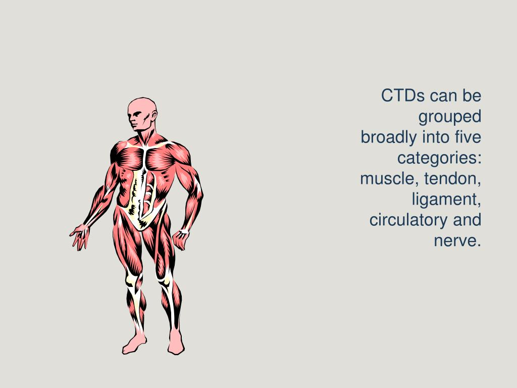 CTDs can be grouped broadly into five categories: muscle, tendon, ligament, circulatory and nerve.