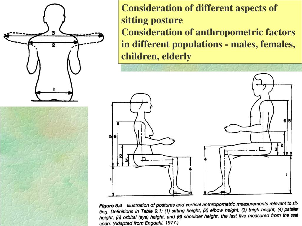 Consideration of different aspects of sitting posture