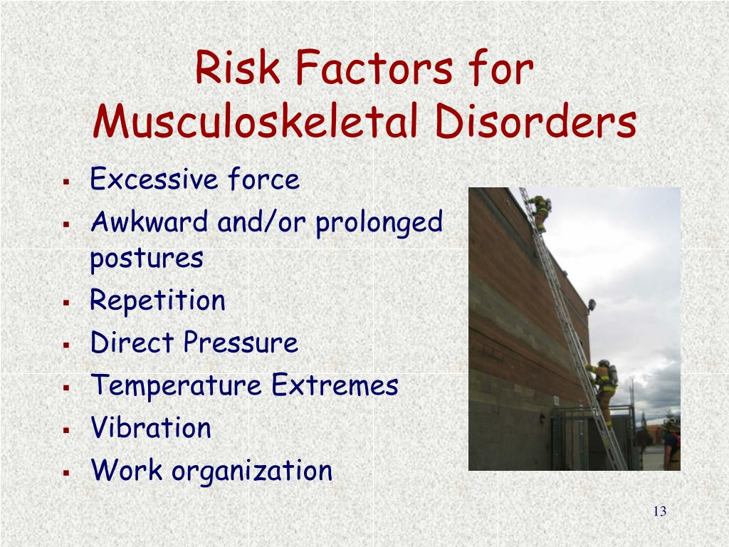 Risk Factors for Musculoskeletal Disorders