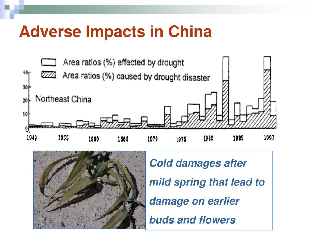 Adverse Impacts in China