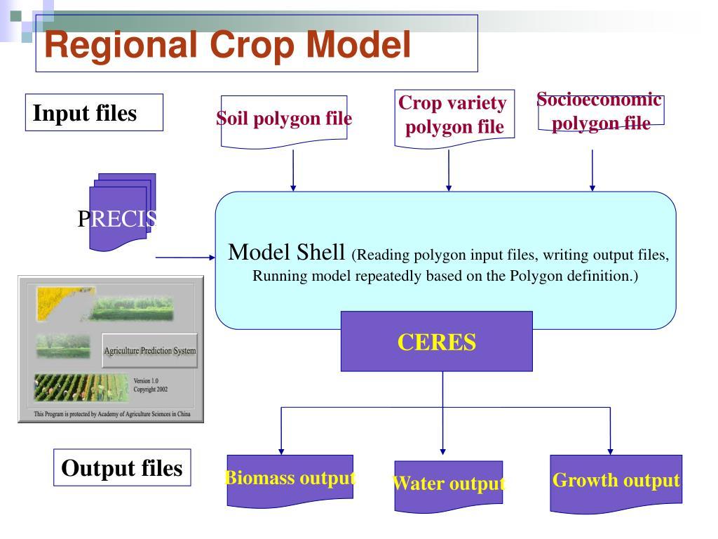 Regional Crop Model