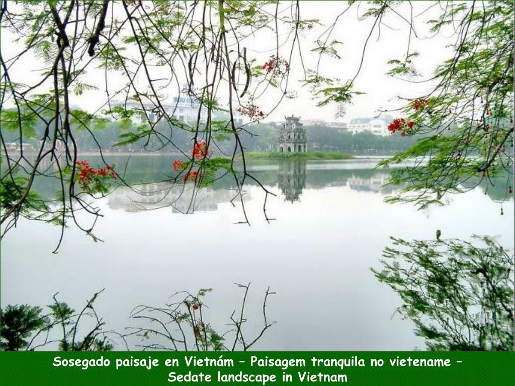 Sosegado paisaje en Vietnám – Paisagem tranquila no vietename –