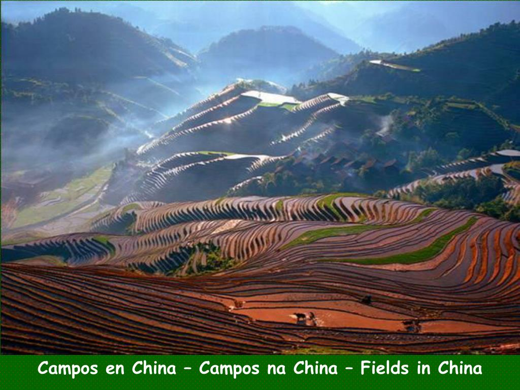Campos en China – Campos na China – Fields in China