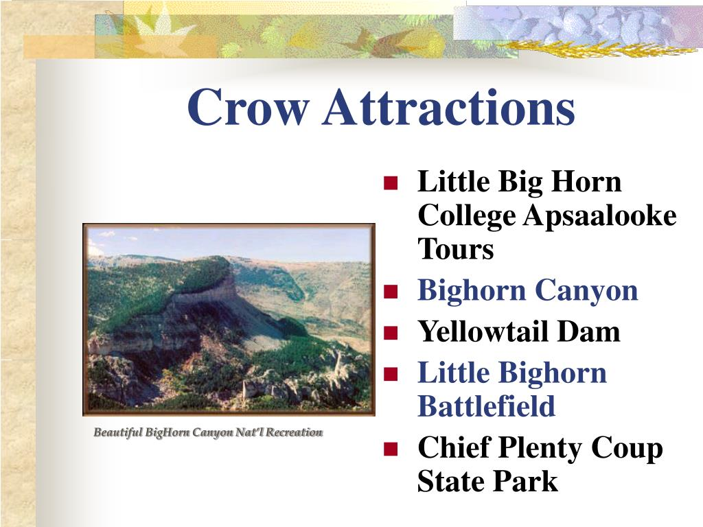 Crow Attractions