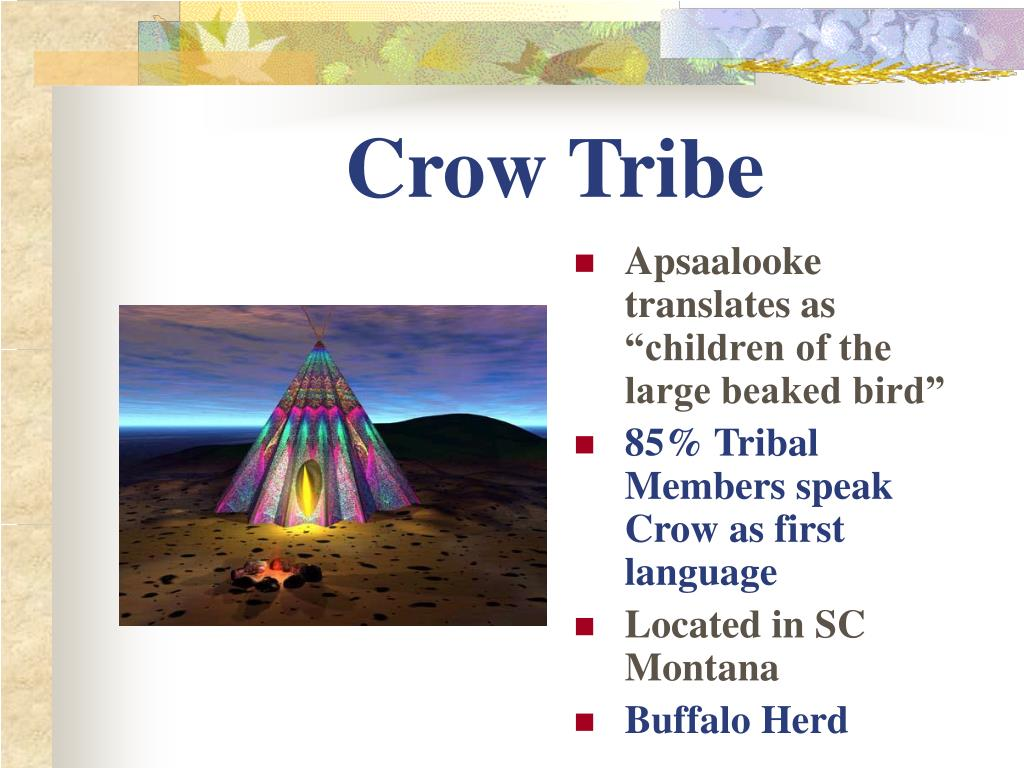 Crow Tribe