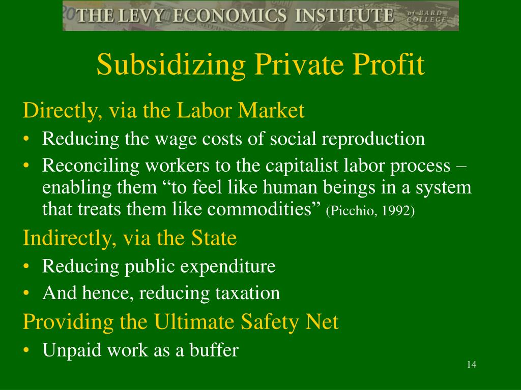 Subsidizing Private Profit