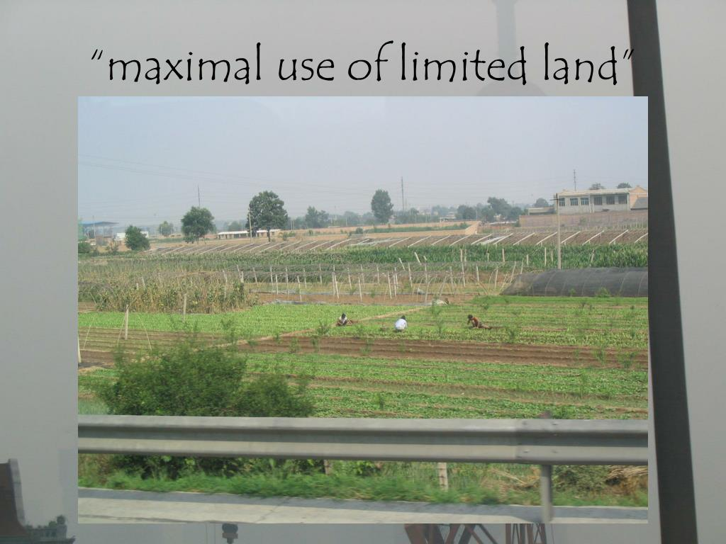 """""""maximal use of limited land"""""""