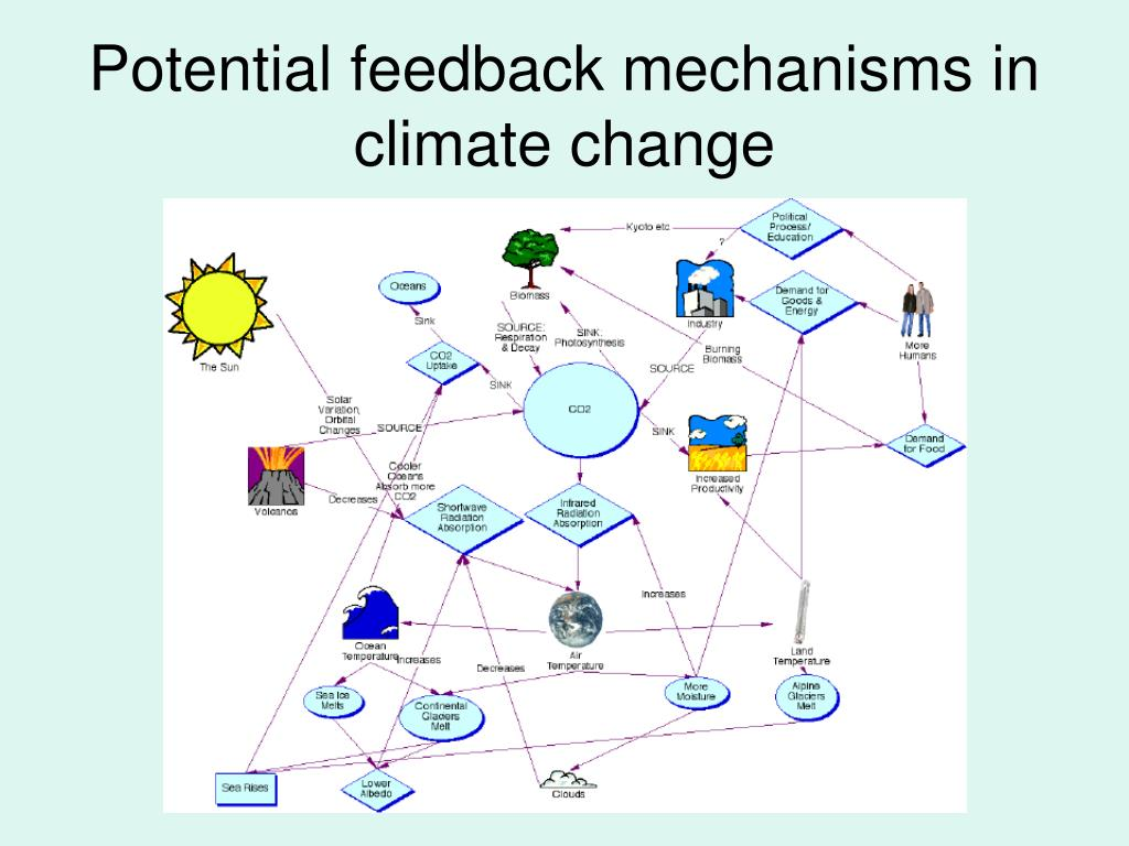Potential feedback mechanisms in climate change