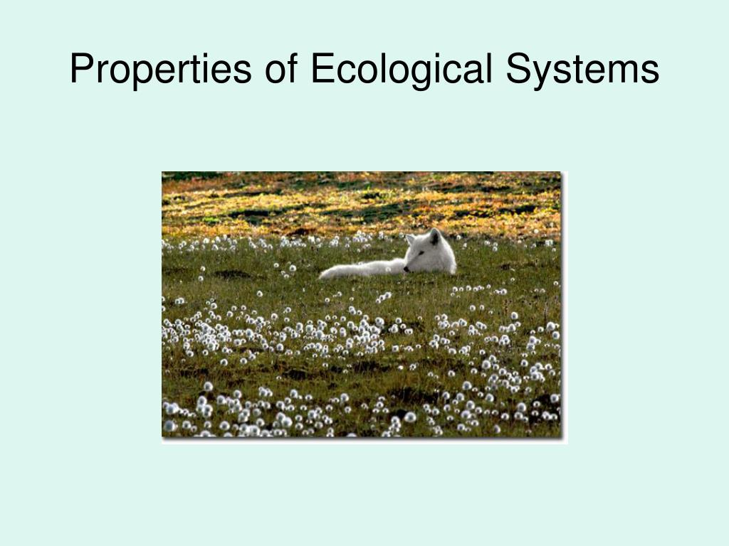 Properties of Ecological Systems