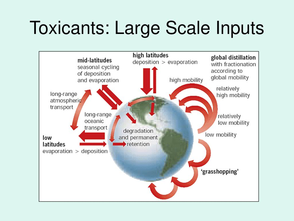 Toxicants: Large Scale Inputs