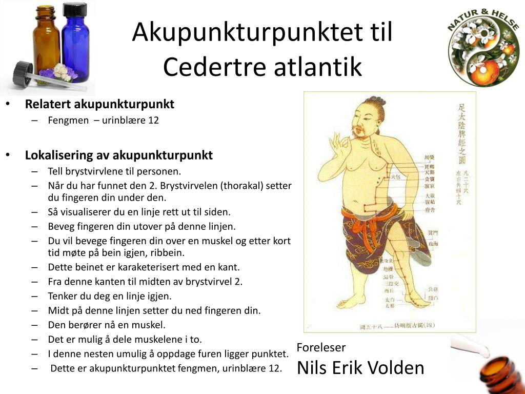 Akupunkturpunktet til
