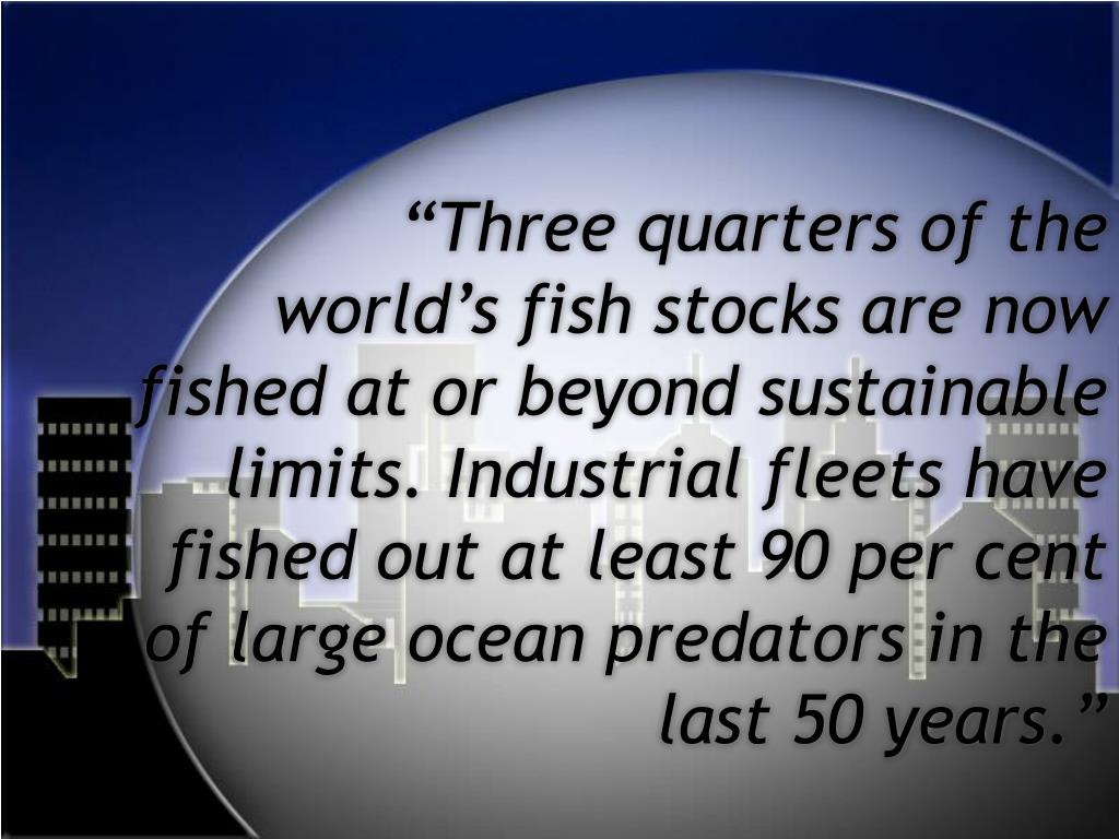 """Three quarters of the world's fish stocks are now fished at or beyond sustainable limits. Industrial fleets have fished out at least 90 per cent of large ocean predators in the last 50 years."""