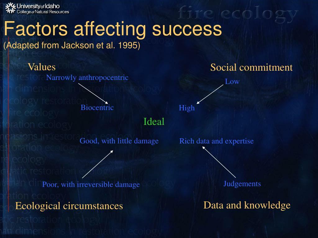 Factors affecting success