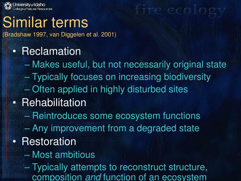 Similar terms