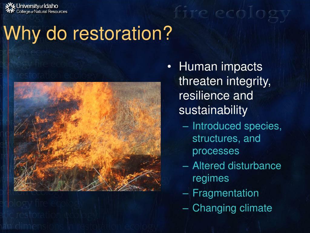 Why do restoration?