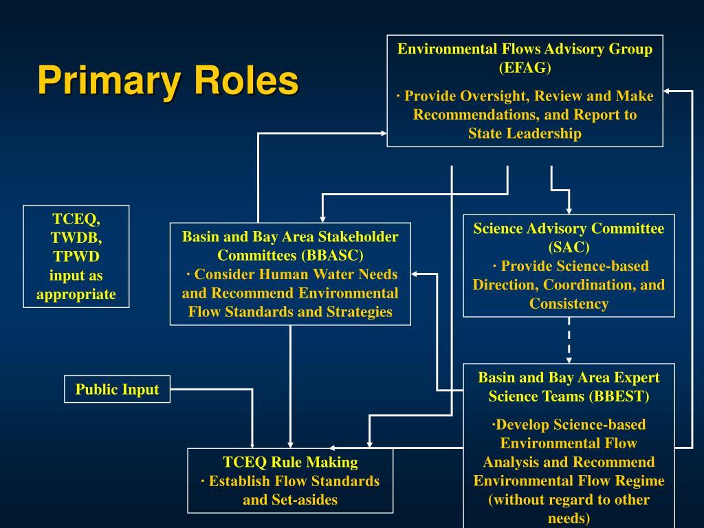 Primary Roles