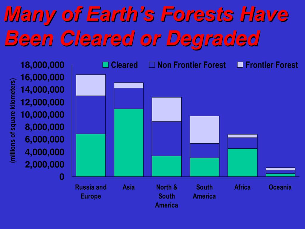 Many of Earth's Forests Have Been Cleared or Degraded