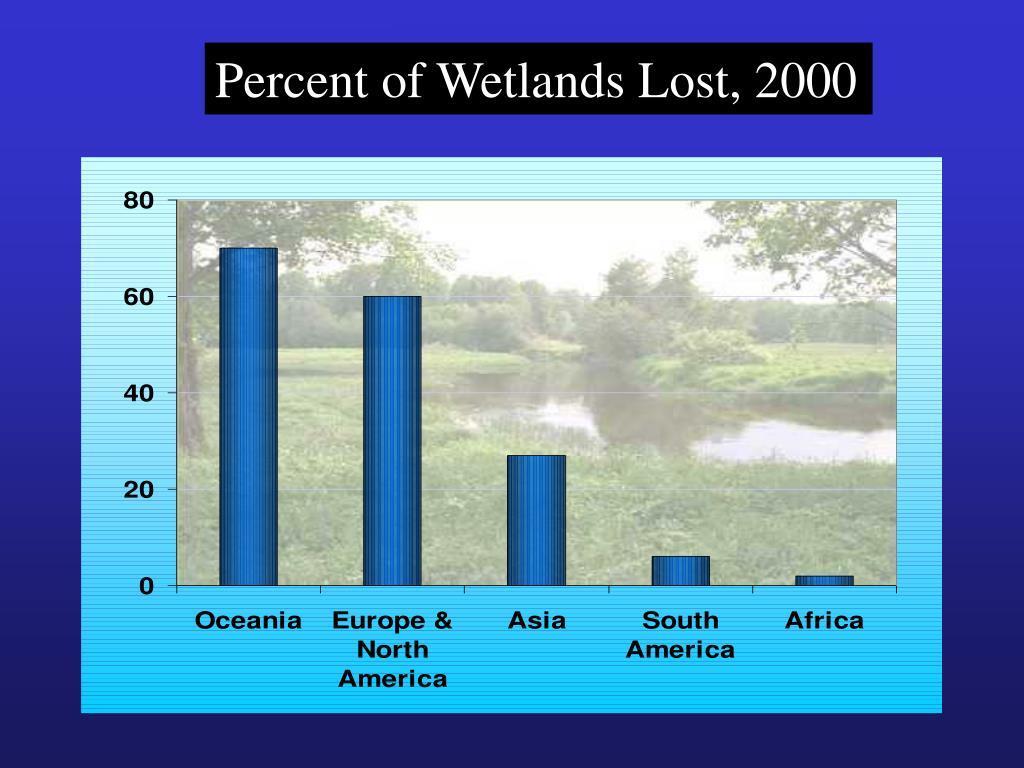 Percent of Wetlands Lost, 2000