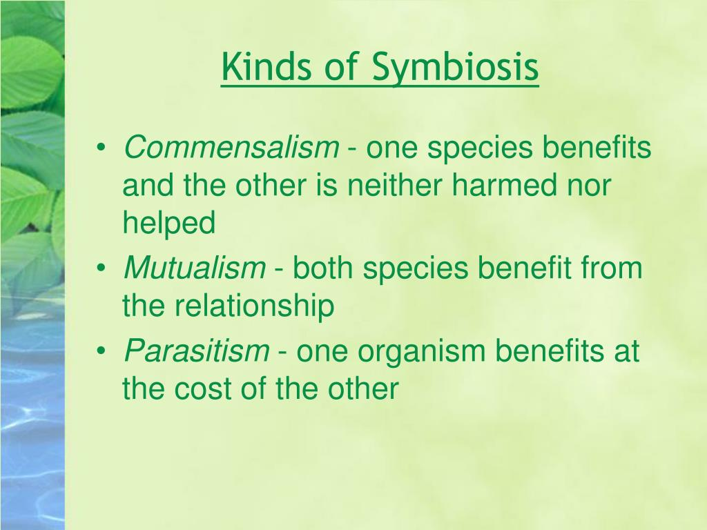 Kinds of Symbiosis