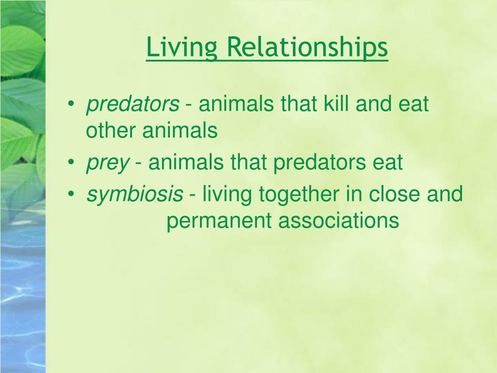 Living Relationships