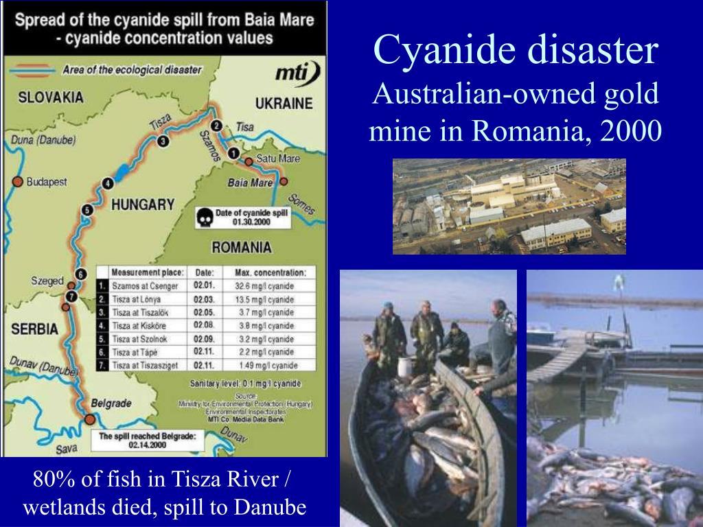 Cyanide disaster