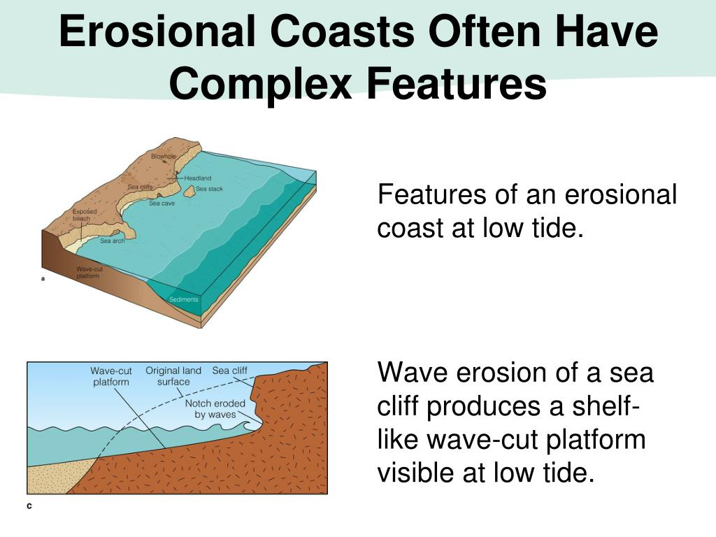 Features of an erosional coast at low tide.