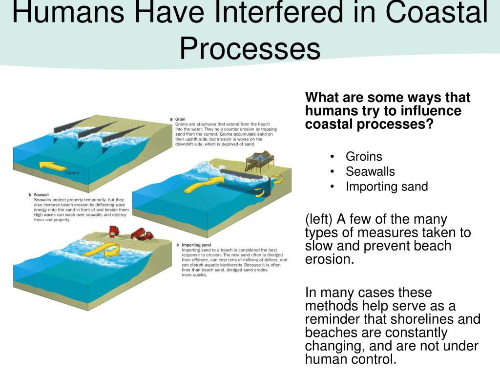 Humans Have Interfered in Coastal Processes