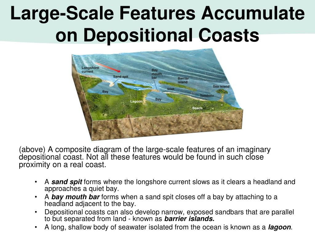 Large-Scale Features Accumulate on Depositional Coasts