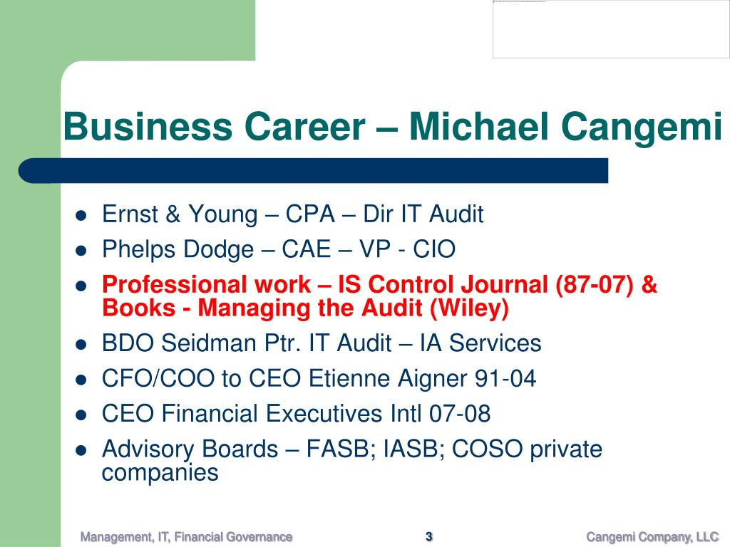 Business Career – Michael Cangemi