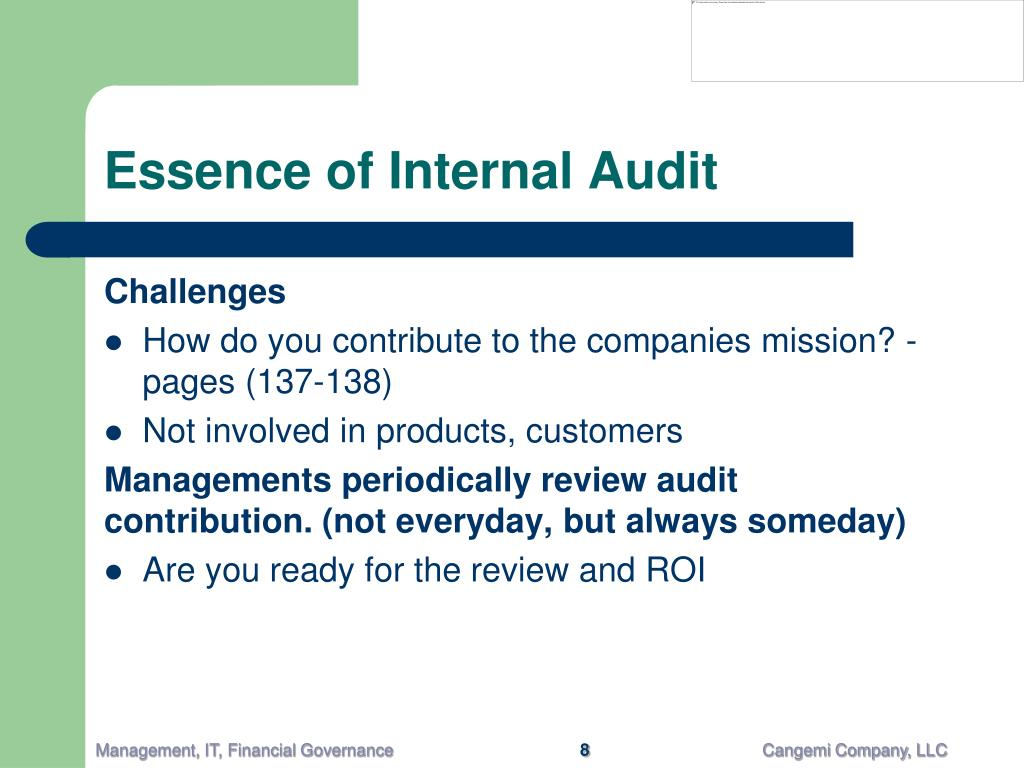 Essence of Internal Audit