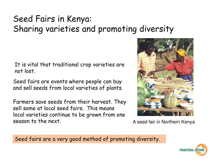 Seed fairs in kenya sharing varieties and promoting diversity