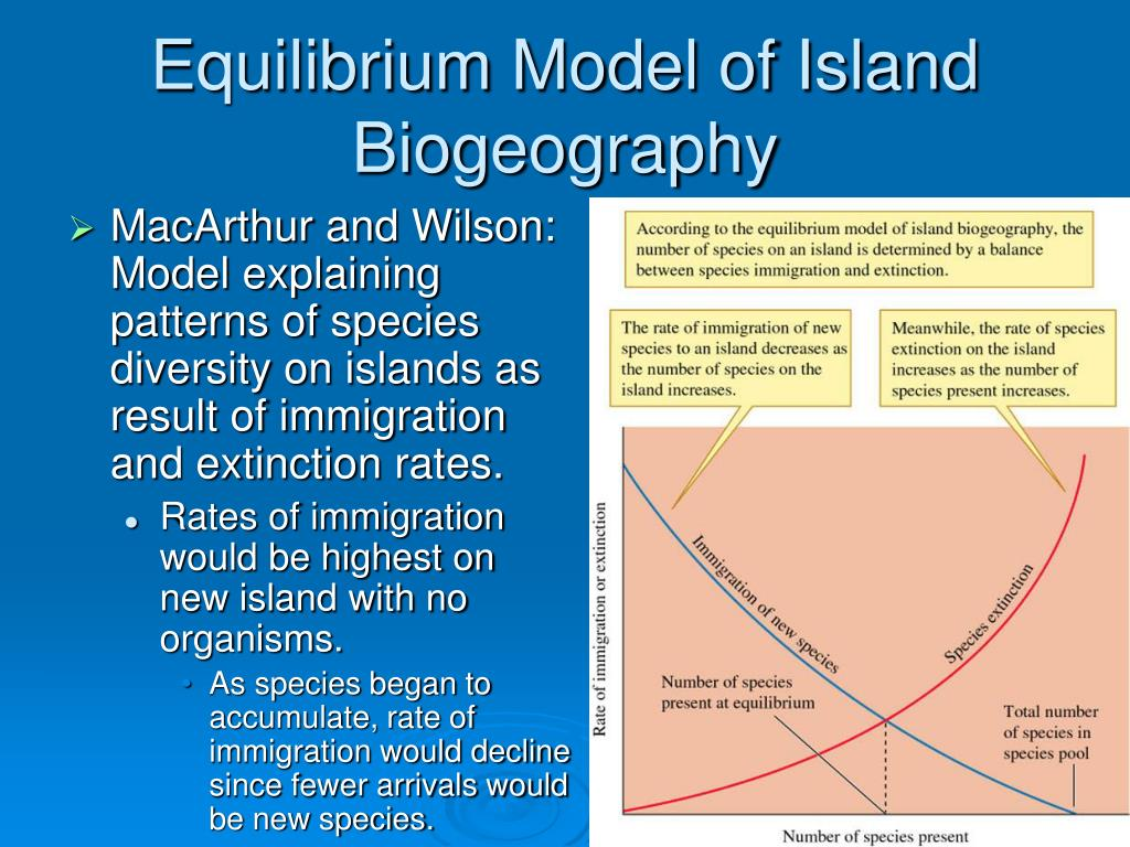 Equilibrium Model of Island Biogeography