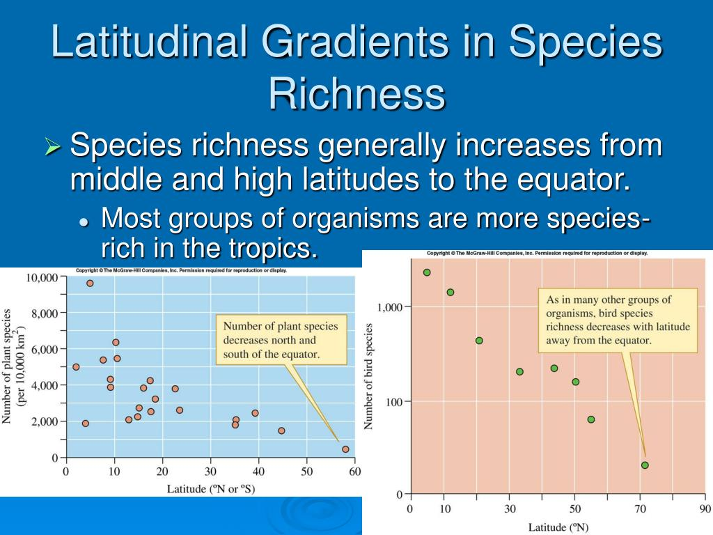 Latitudinal Gradients in Species Richness