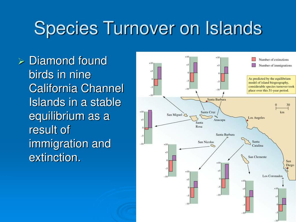 Species Turnover on Islands