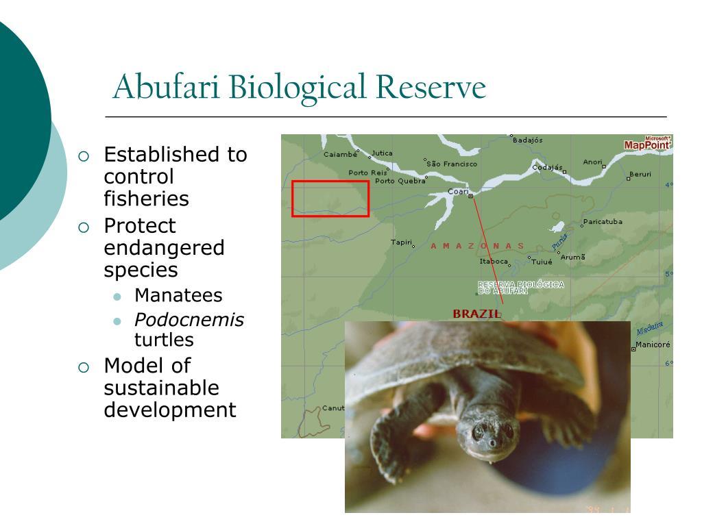 Abufari Biological Reserve