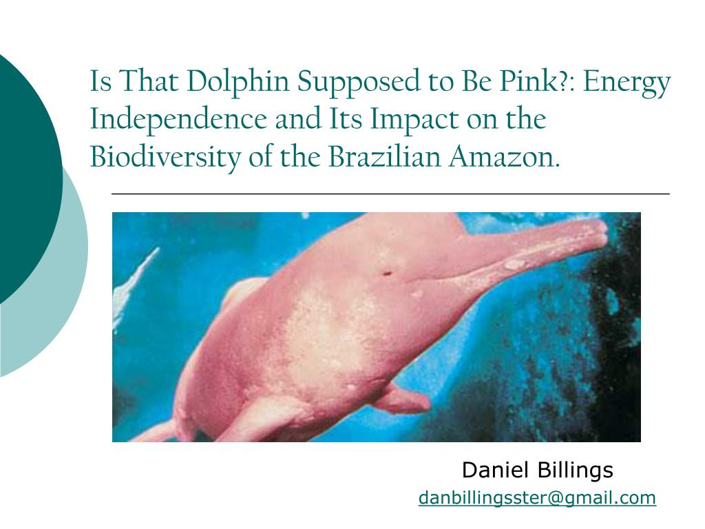 Is That Dolphin Supposed to Be Pink?: Energy Independence and Its Impact on the Biodiversity of the Brazilian Amazon.