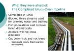 what they were afraid of the completed urucu coari pipeline