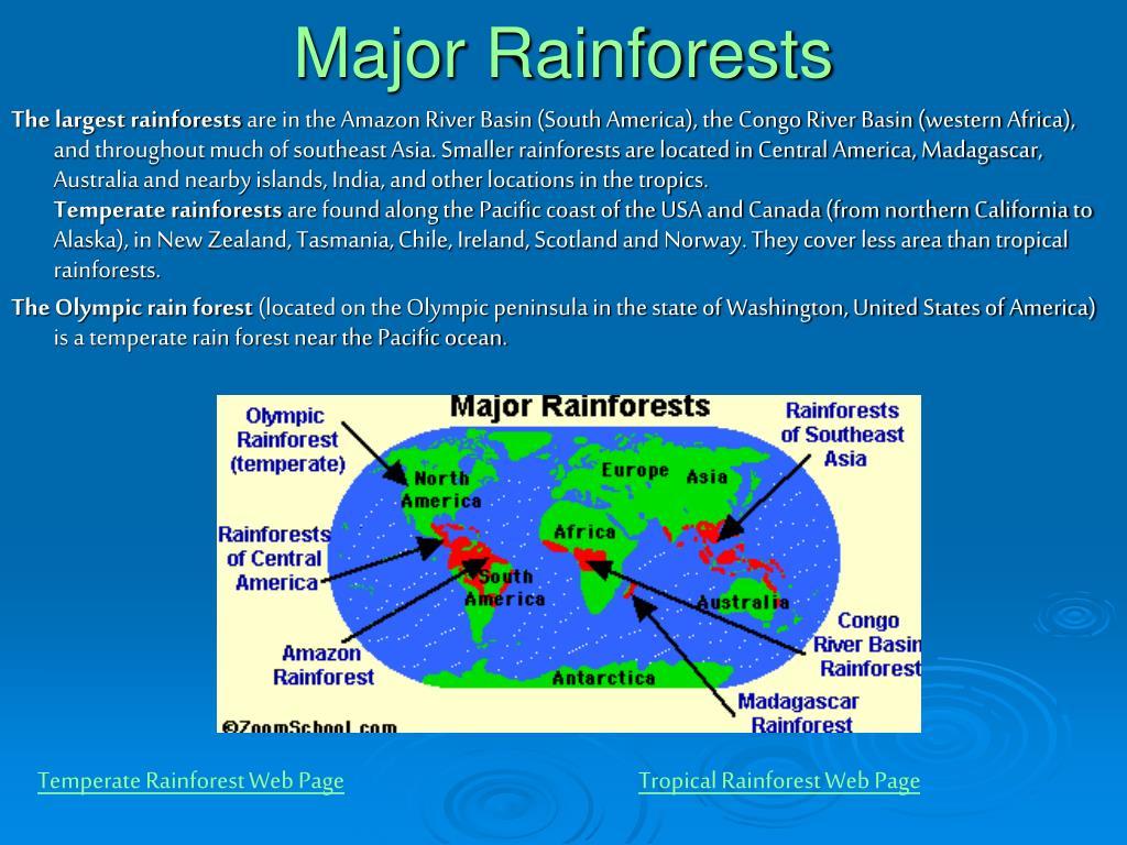 Major Rainforests