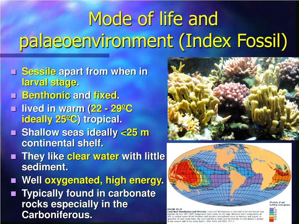 Mode of life and palaeoenvironment (Index Fossil)