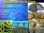tabulate corals to know